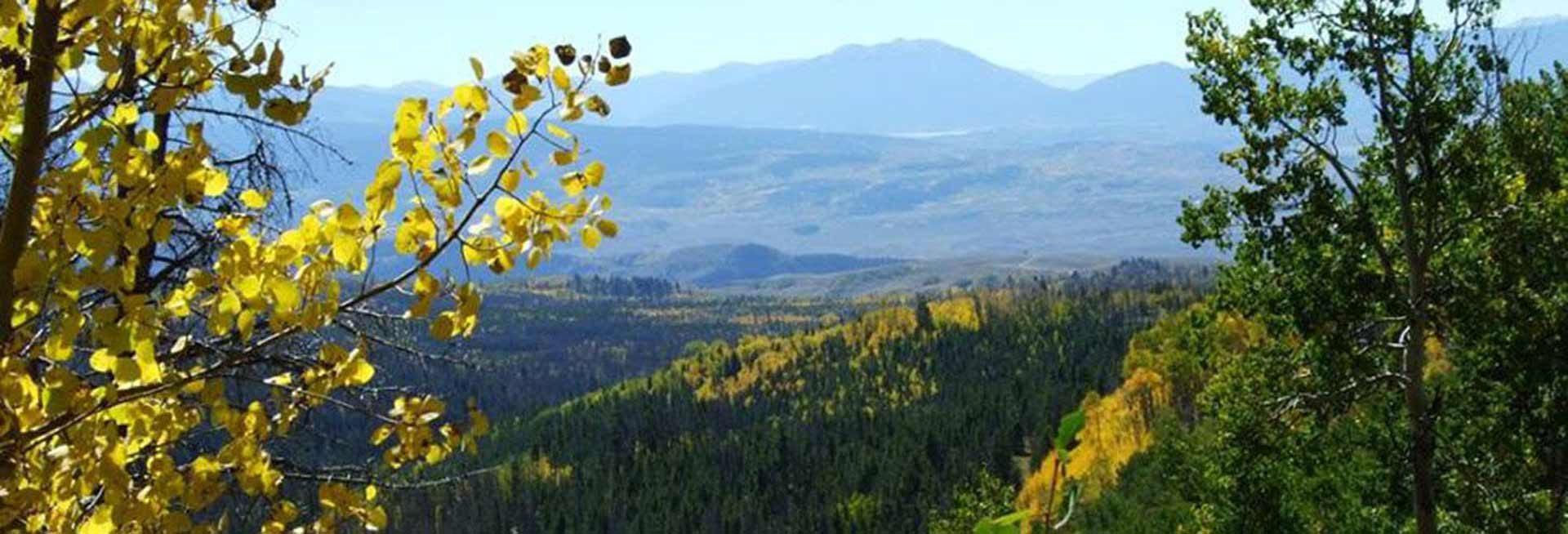 Arapaho National Forest.