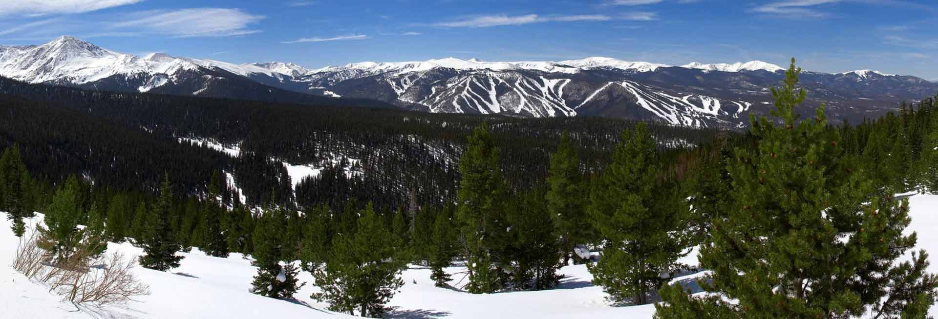 Winter Park forest and mountains in winter.